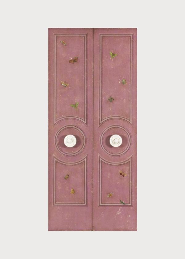 D15 Lille Door